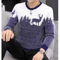 Jaukus vyriškas megztinis